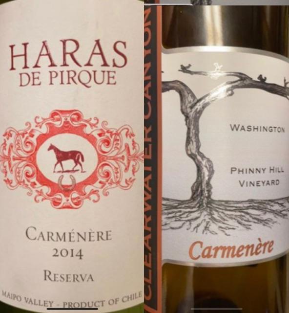 Episode 31 – 2014 Hara De Pirque Carmenere Reserva & 2017 Clearwater Canyon Cellars Carmenere
